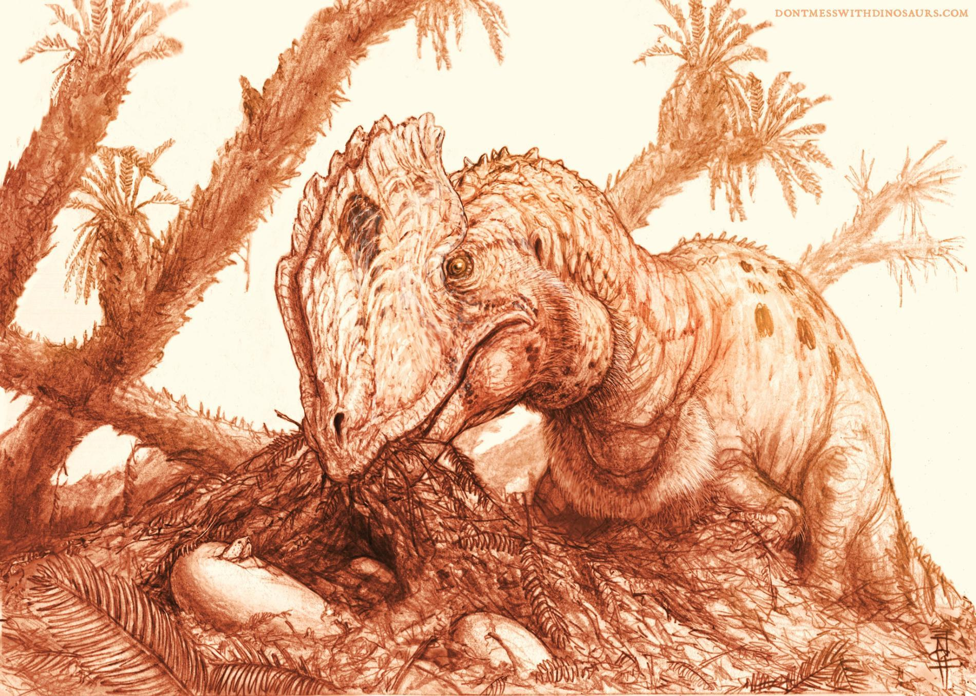 illustration in sepia tones of a dinosaur eating with prehistoric palm trees in the background